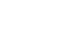 Concretewave Skateshop